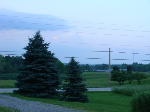 view from my kitchen porch